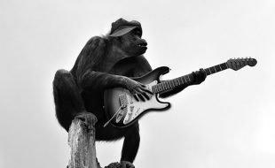 Qual'è e come evitare il classico errore del chitarrista principiante. Veloce manuale di sopravvivenza alle prime lezioni di chitarra